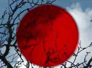 japan-flagg
